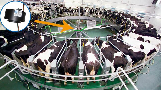 转盘式旋转挤奶机过孔滑环